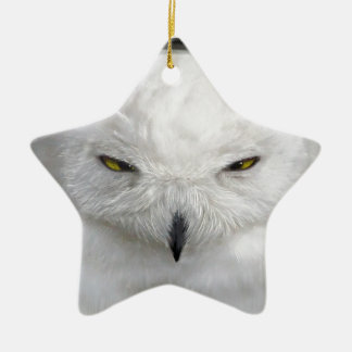 bad-tempered snowy owl ceramic star ornament