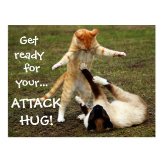 Badass Cats - Attack hug Postcard