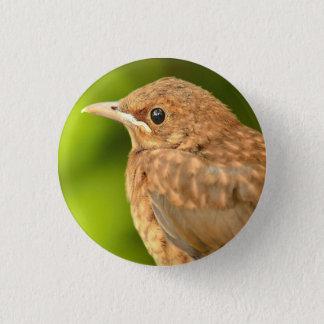 Badge with bird 1 inch round button