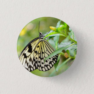 Badge with butterfly 1 inch round button