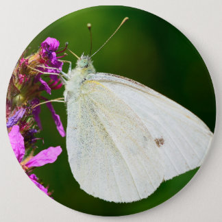 Badge with butterfly 6 inch round button