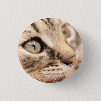 Badge with cat 1 inch round button