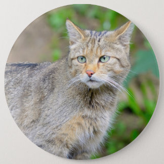 Badge with cat 6 inch round button