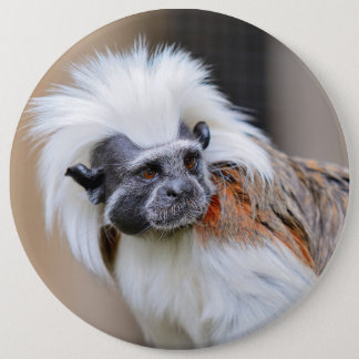 Badge with Cotton-top Tamarin monkey 6 Inch Round Button