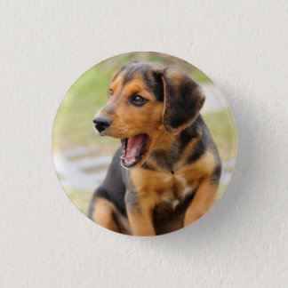 Badge with dog 1 inch round button