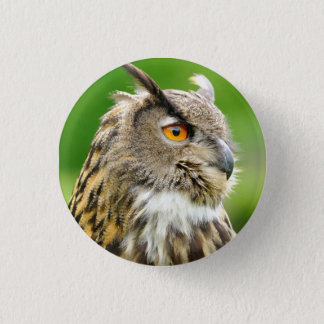 Badge with Owl 1 Inch Round Button
