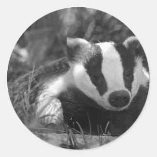 Badger in Black and White Round Sticker