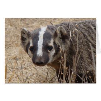Badger Staredown Card