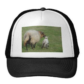 Badgerface Ewe with lamb Trucker Hat