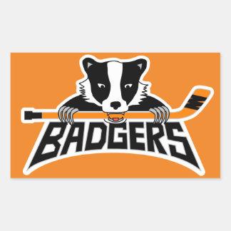Badgers Hockey Logo