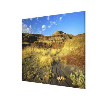 Badlands at Dinosaur Provincial Park in Alberta, Canvas Print
