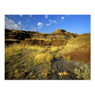 Badlands at Dinosaur Provincial Park in Alberta, Postcard
