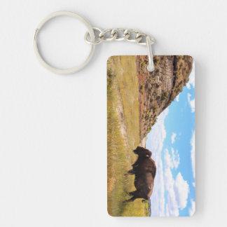 Badlands of North Dakota Keychain