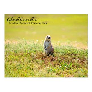 Badlands of North Dakota Postcard