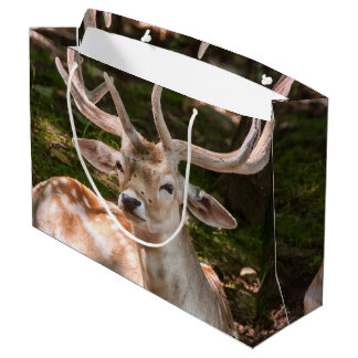 Bag gift photo stag under wood