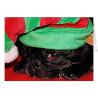 """""""Bah Hum Pug!"""" Holiday Greeting Card"""