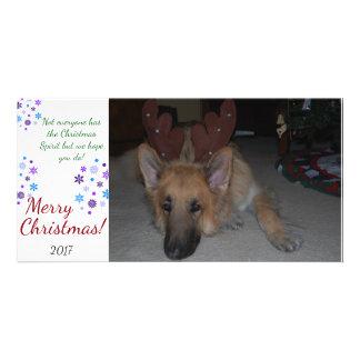 Bah Humbug Christmas Card German Shepherd funny Personalized Photo Card