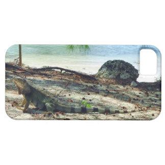 Bahama Iguana iPhone 5 Case-Mate Case
