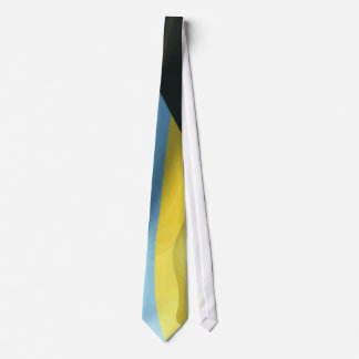 Bahamas 40th anniversary celebration flag tie