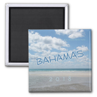 Bahamas Beach Souvenir Fridge Magnet Change Year