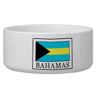 Bahamas Dog Water Bowl