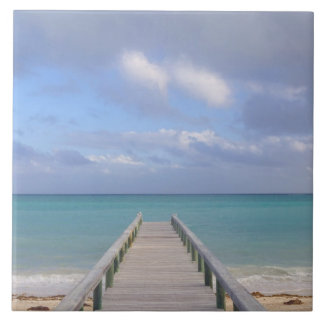 BAHAMAS, Grand Bahama Island, Eastern Side: Tile