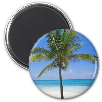 Bahamas Palm 2 Inch Round Magnet