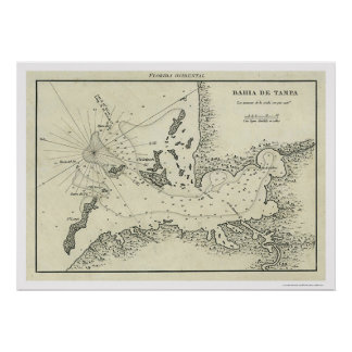 Bahia De Tampa Florida Map 1809 Poster
