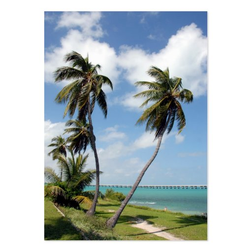 bahia honda state park and seven mile bridge pack of chubby business cards