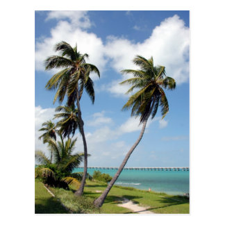 Bahia Honda State Park And Seven Mile Bridge Postcard