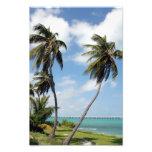 Bahia Honda State Park Florida Keys Photo Art