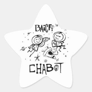 BAICFF Kids Official 2014 Star Stickers