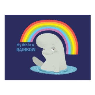 Bailey | My Life is a Rainbow Postcard