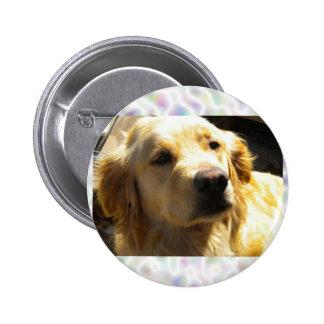 Bailey the Golden Retriever Button