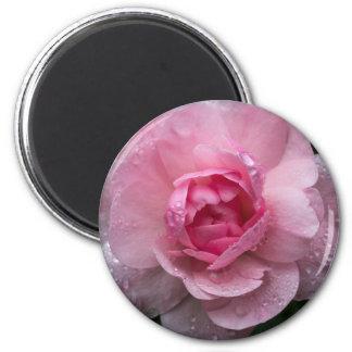 Baisses roses magnet rond 8 cm