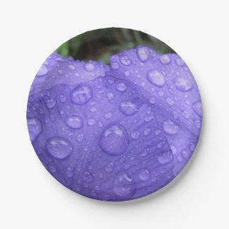 Baisses sur l'iris pourpre assiette en papier 17,8 cm