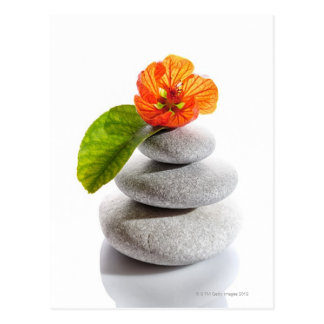 Balanced stones and red flower postcard