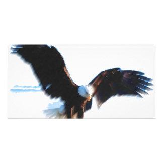 Bald American Eagle Landing Photo Cards