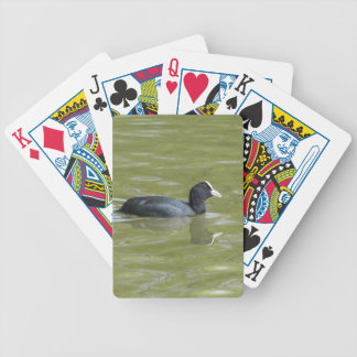 bald-coot-3333 bicycle playing cards