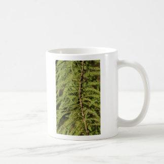 Bald Cypress Branch Coffee Mug