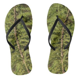 Bald Cypress Branch Flip Flops
