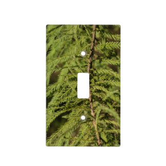 Bald Cypress Branch Light Switch Cover