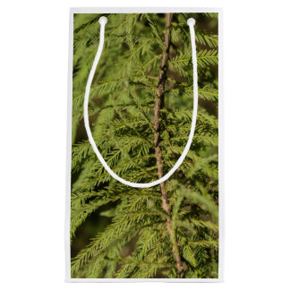 Bald Cypress Branch Small Gift Bag