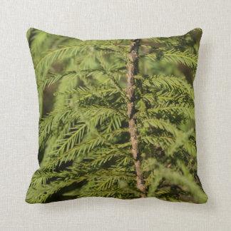 Bald Cypress Branch Throw Pillow