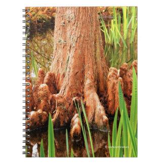 Bald Cypress Knees Notebooks