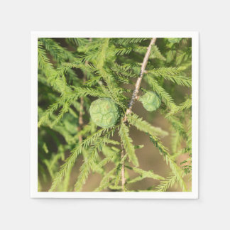 Bald Cypress Seed Cone Paper Napkins
