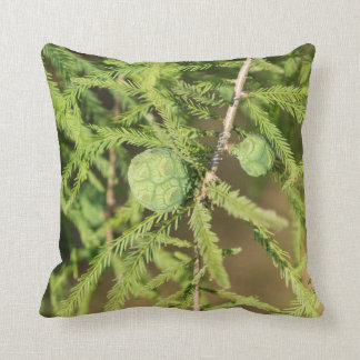 Bald Cypress Seed Cone Throw Pillow