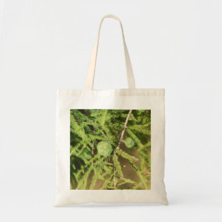 Bald Cypress Seed Cone Tote Bag
