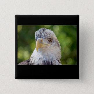 Bald Eagle 2 Inch Square Button