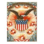 Bald Eagle American Flag Shield Fireworks Postcard